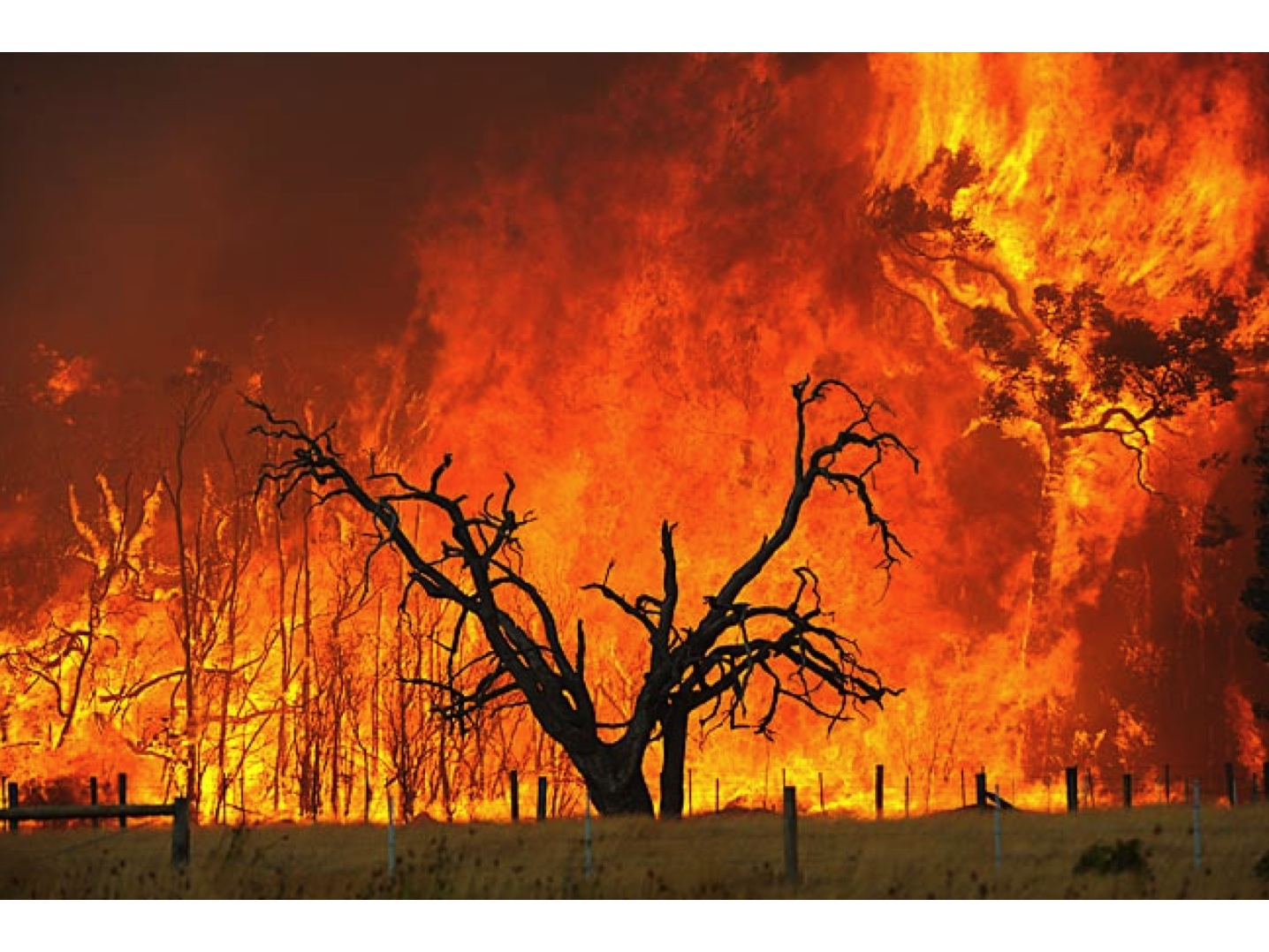 Earthbag domes are more fire resistant and safer in brush fires such as this one in Australia.