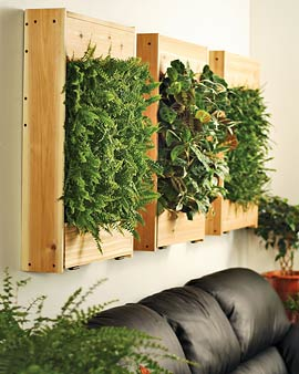 Living wall planters like this one could be made with pallet wood or other recycled wood for free. Pots can be removed as needed.