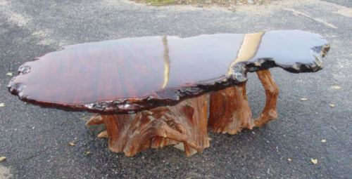 Stump wood coffee table with slab top
